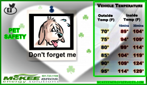PLEASE DON'T FORGET OUR FURRY FRIENDS IN THE CAR